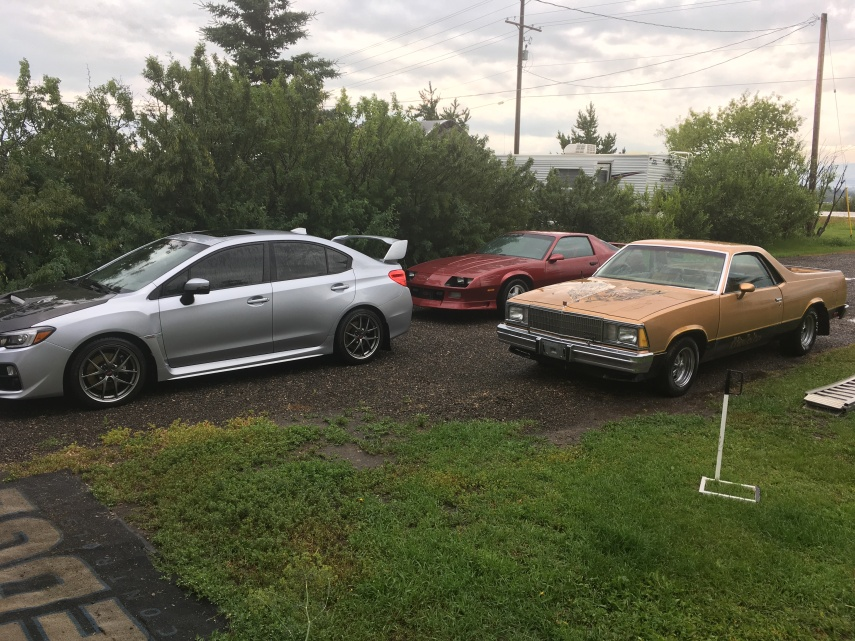 Cars in Driveway