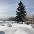winter in april3